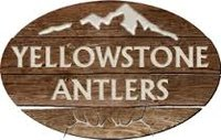 Yellowstone Antlers