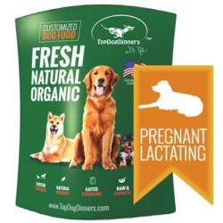 TopDogDinners (Pregnant/Lactating)