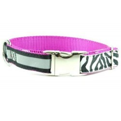 Urban Zebra Essential Collars & Leads | PrestigeProductsEast.com