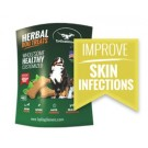 4oz Herbal Dog Beef Treats (Skin Infections)