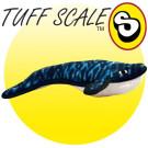Ocean Creature Whale