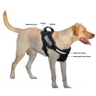 Dogline Alpha Multi-Purpose / Service Harness