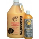 BALANCE Apricot Kernel Pet Shampoo | PrestigeProductsEast.com