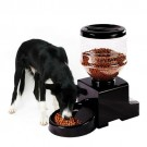 Automatic Pet Feeder | PrestigeProductsEast.com