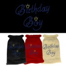 Birthday Boy Rhinestone Knit Pet Sweater | PrestigeProductsEast.com