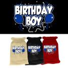Birthday Boy Screen Print Knit Pet Sweater | PrestigeProductsEast.com