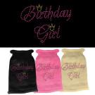 Birthday Girl Rhinestone Knit Pet Sweater | PrestigeProductsEast.com