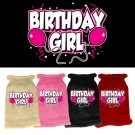 Birthday Girl Screen Print Knit Pet Sweater | PrestigeProductsEast.com