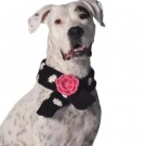 Black Polka Dot Flower Scarf | PrestigeProductsEast.com