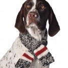 Chilly Dog Boyfriend Scarf | PrestigeProductsEast.com