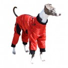 """Classy"" Dog Coat - Long Leg Dog 