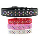 Sprinkles Dog Collar Confetti Crystals | PrestigeProductsEast.com