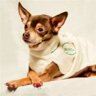 Dog Bathrobe by Dog Fashion Spa | PrestigeProductsEast.com