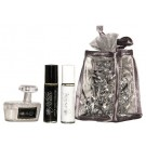 Dog Gift Bag - Moisturizer - Calming oils - Paw Brush | PrestigeProductsEast.com