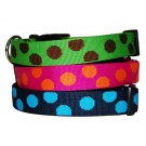 Polka Dot Collars and Leads | PrestigeProductsEast.com