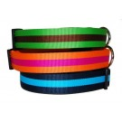 Stripe Collars and Leads | PrestigeProductsEast.com