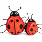 fabdog Ladybug faball Squeaky Dog Toy | PrestigeProductsEast.com