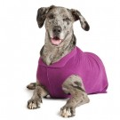 Gold Paw Stretch Fleece | PrestigeProductsEast.com