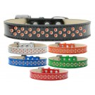 Sprinkles Ice Cream Dog Collar Orange Crystals | PrestigeProductsEast.com