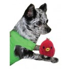 Knit Knack Rockin Robin Organic Cotton Dog Toy | PrestigeProductsEast.com