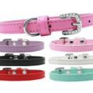 Omaha Plain Puppy Collar | PrestigeProductsEast.com