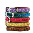Pizzazz Cat Collar | PrestigeProductsEast.com