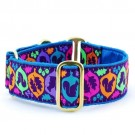 Squirrel! Teal Satin Lined Collars | PrestigeProductsEast.com