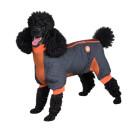 Springy Dog Coat