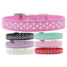 Sprinkles Dog Collar Pearls | PrestigeProductsEast.com