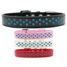 Sprinkles Dog Collar Southwest Turquoise Pearls | PrestigeProductsEast.com