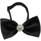 White Daisies Chipper Pet Bow Tie | PrestigeProductsEast.com